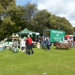 Poole Community Fair